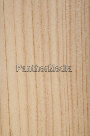 wood surface of larch larch