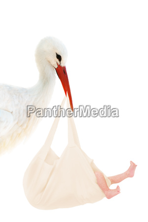 stork with baby in linen bag