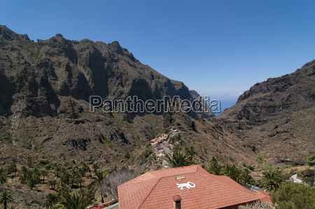 romantic canary islands canaries