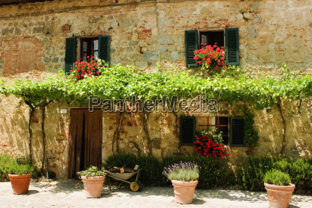 potted plants outside a house piazza