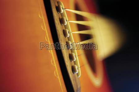 extreme close up of violin bridge