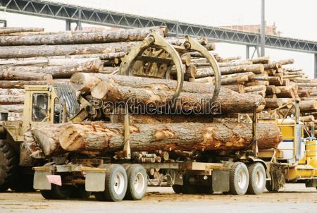 semi truck unloading logs reedsport oregon