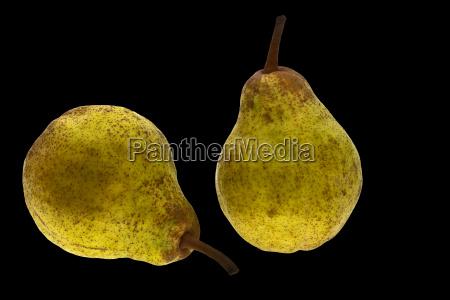 pears black hg