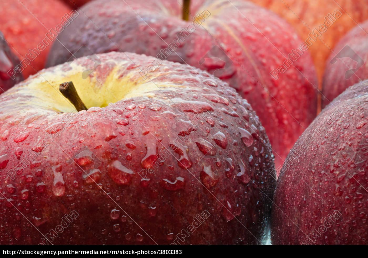 apples, wet, ...... - 3803383