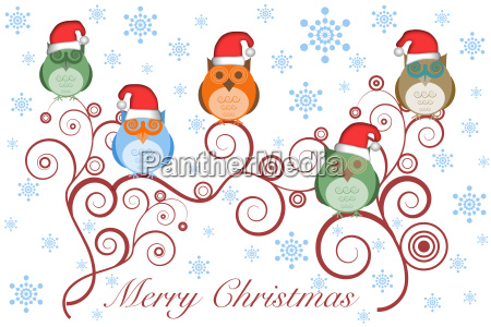 christmas owls with santa hat on