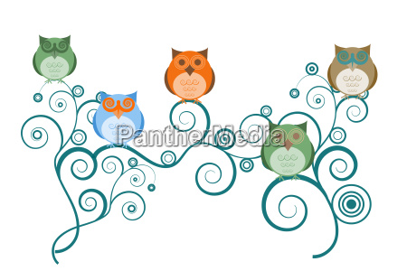 owls on tree branches