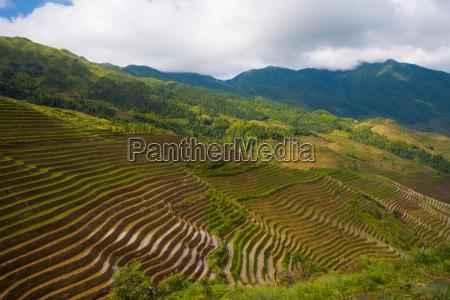 mountain of rice terraces dragons backbone