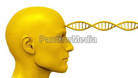golden awakening male head with