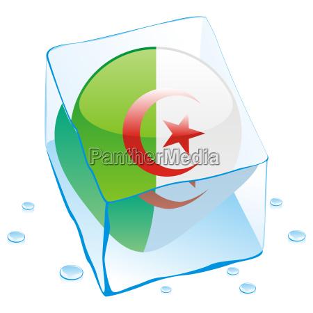 algeria flag frozen in ice cube