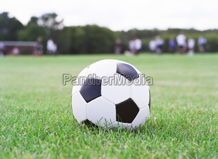 soccer ball on the field with