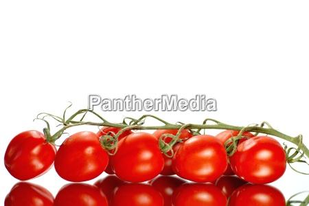 sh tomatoes frame reflected its shape
