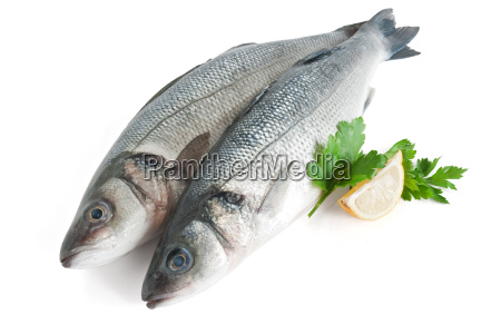 sea bass with parsley and lemon
