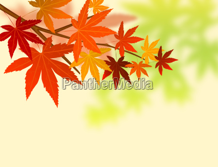 abstract nature leaf background
