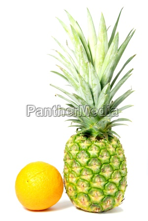 isolated orange and pineapple pattern