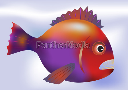 big predatory fish