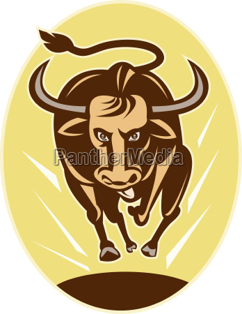 raging texas longhorn bull charging
