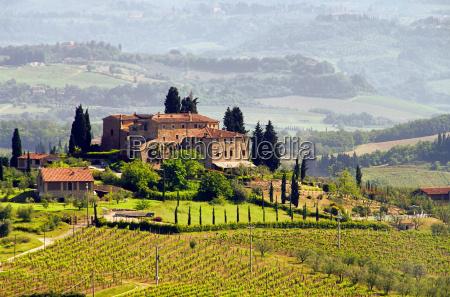 tuscany, weingut, -, tuscany, vineyard, 03 - 4275897