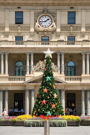 christmas, tree - 4316167