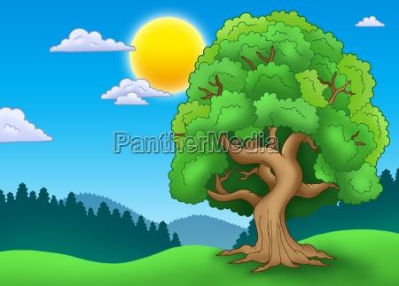 green leafy tree in landscape
