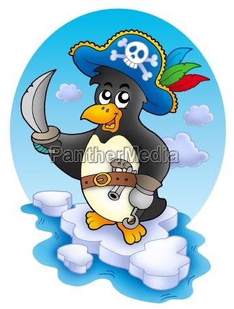 pirate penguin on iceberg