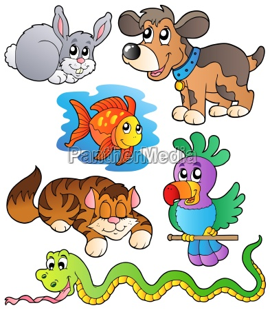 happy pets collection 1