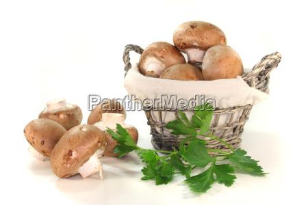 mushrooms and parsley