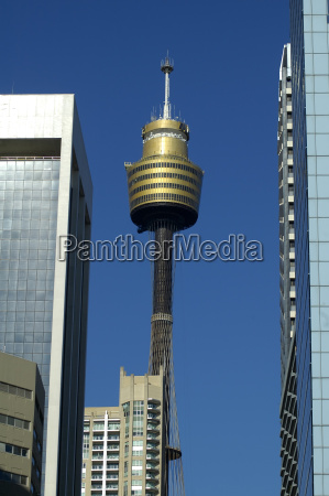 skyscrapers and sydney tower