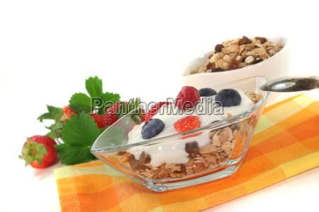 muesli with yoghurt fresh fruit and