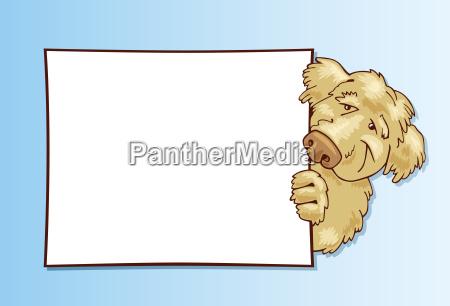 shaggy dog with card