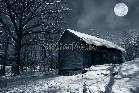 winter scenery with cold full moon
