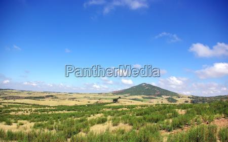 landscape of field near of
