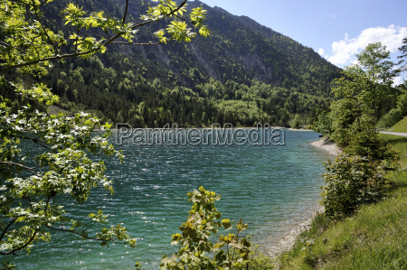 am plansee in tyrol