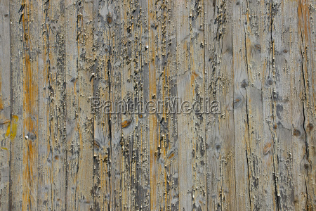 wooden wall with peeling paint