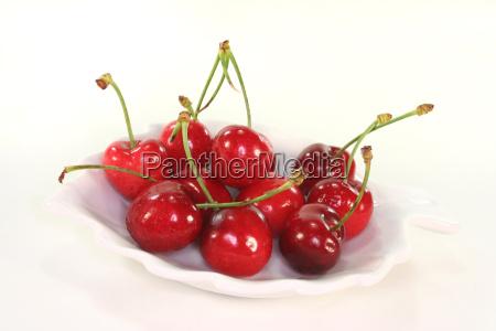 blank european caucasian fruit stone fruit