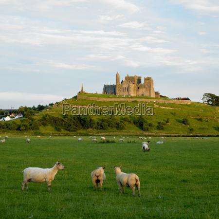 rock of cashel county tipperary ireland