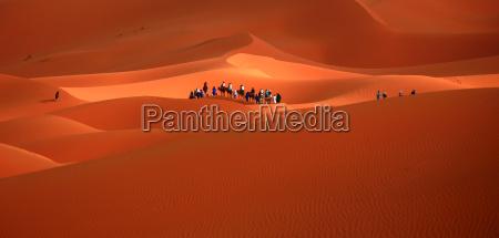 sahara, desert, in, morocco - 5059155