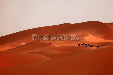 sahara, desert, in, morocco - 5059157