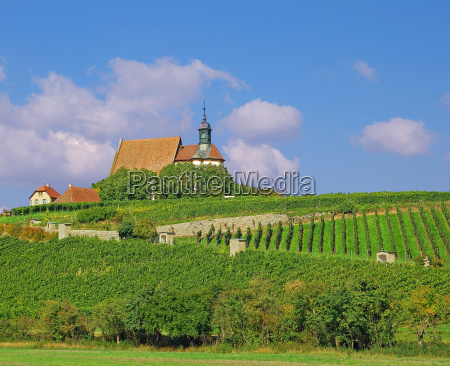 in the franconian wine country in