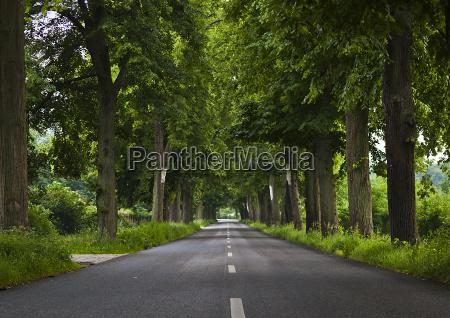 german avenue road