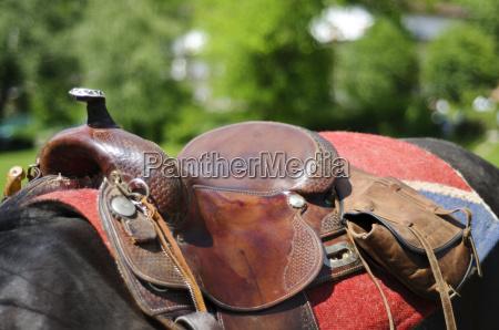 horse saddle detail