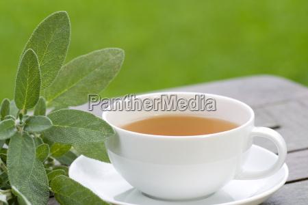 sage tea served in the garden