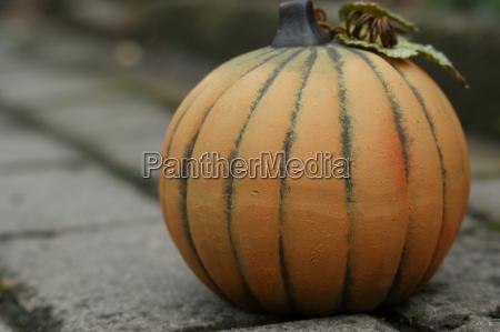 pumpkin dig0016