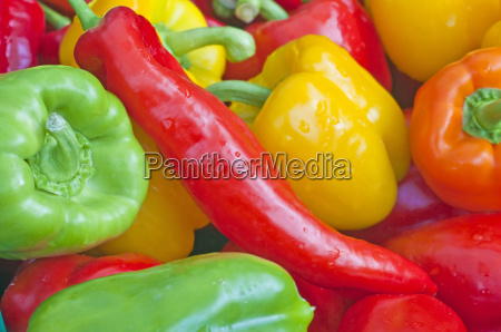 paprika red yellow and green