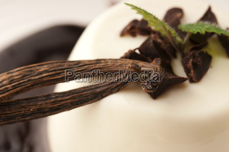 panna cotta with chocolate and vanilla