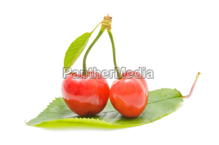 ecological cherries