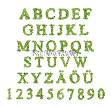 alphabet from letters in a grass