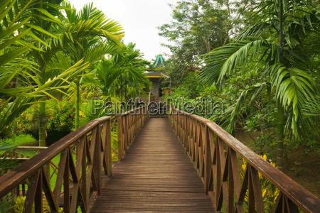 wooden walkway jungle sepilok borneo