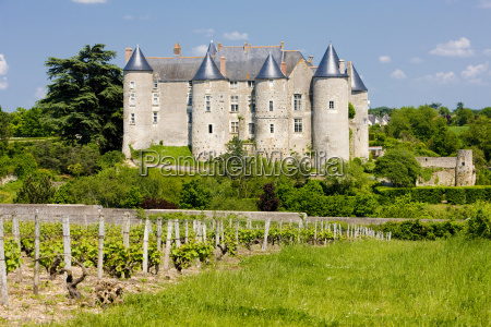 luynes castle with vineyard indre et
