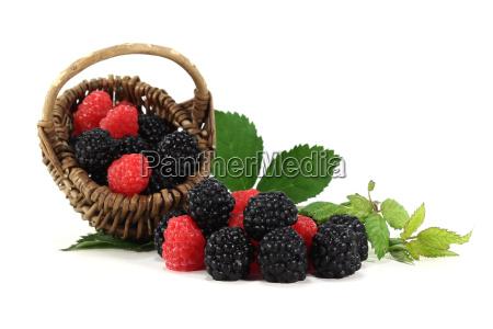 blackberries and raspberries
