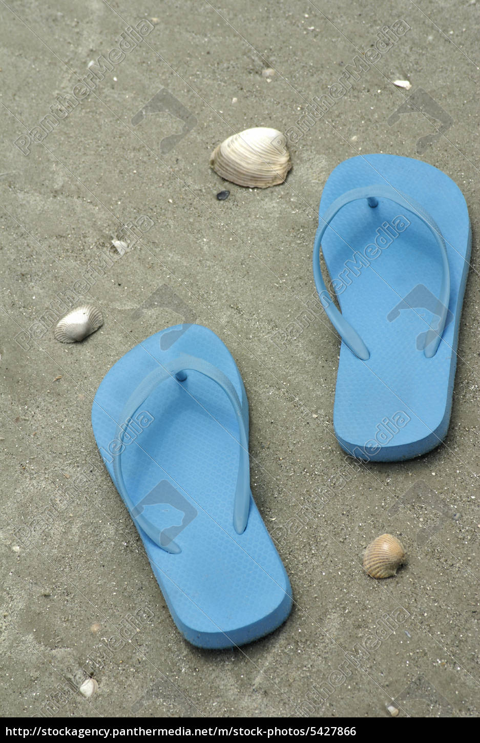 14bac751d1ac75 Blue flip flops on beach - Stock image -  5427866 - PantherMedia ...